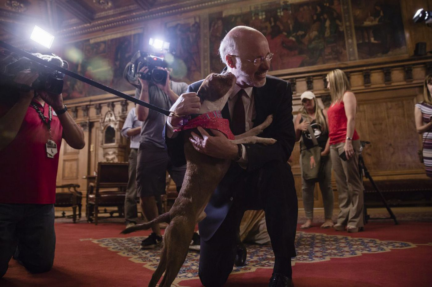 Five things to know about Pa.'s new animal cruelty law