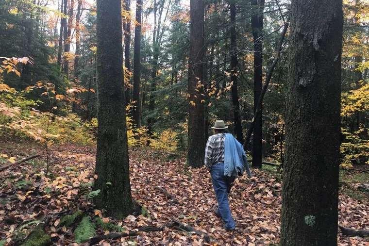 Jim Finley, a retired forestry professor and founder of Penn State's Center for Private Forests, tours his 247-acre property in Elk County each spring to search for invasive plant species.