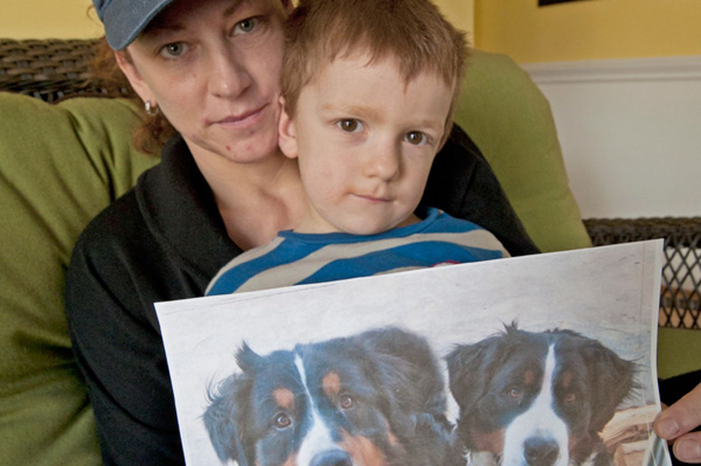 Shooting of dogs sparks ill will in Chester Springs