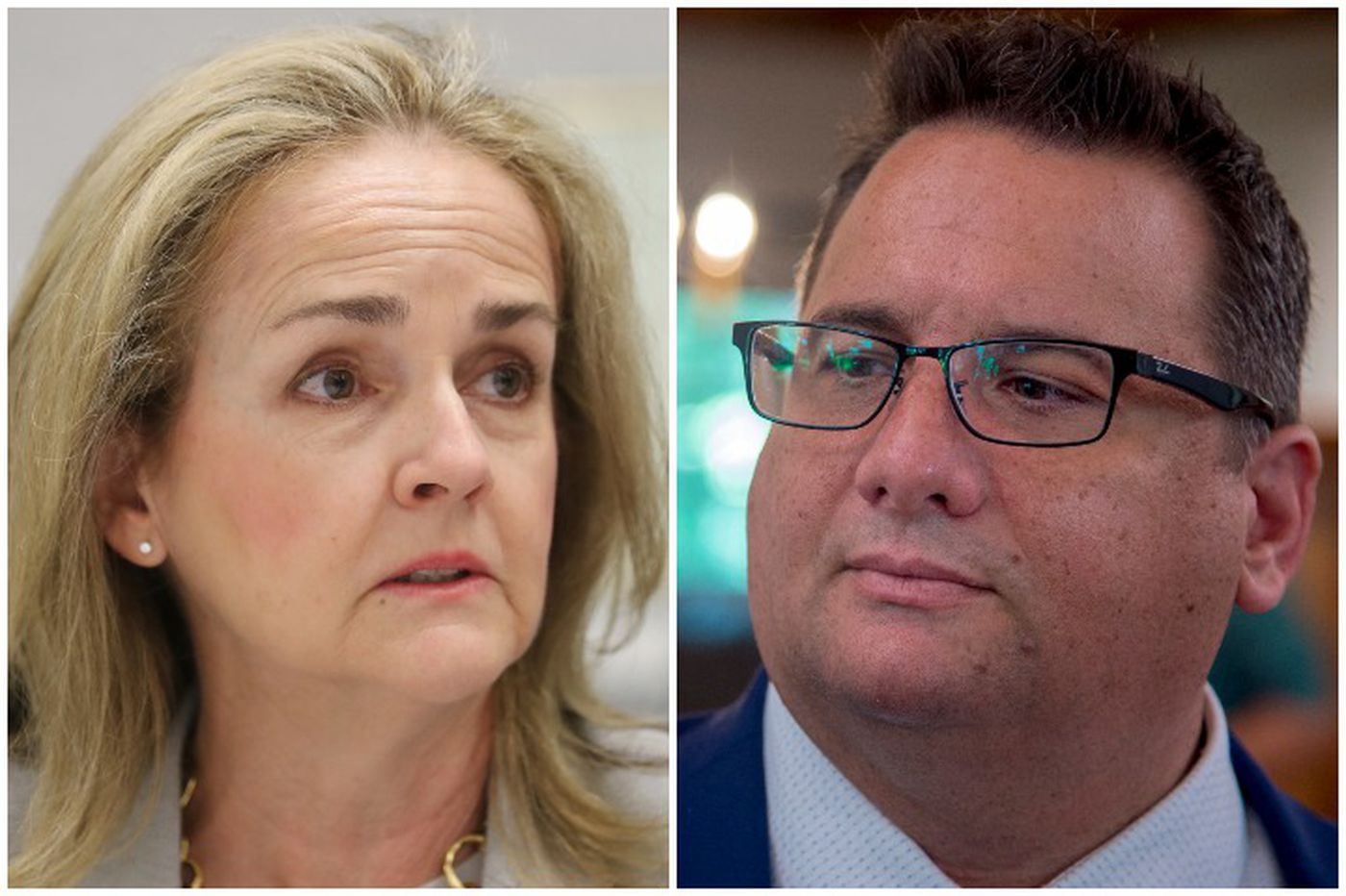 State Rep. Madeleine Dean and businessman Dan David contend to represent Montco's newly drawn congressional district