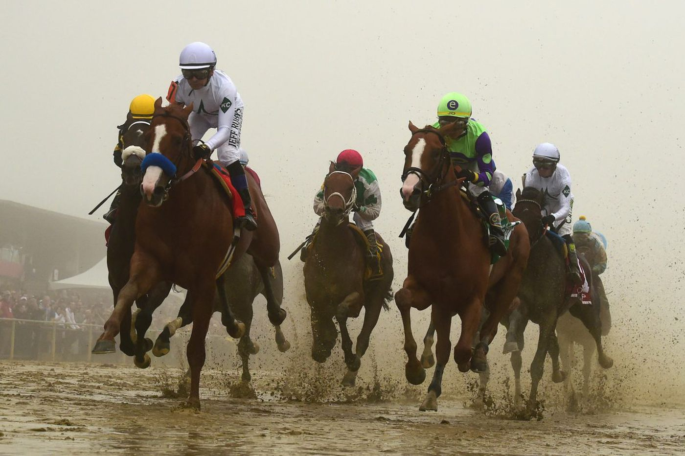 Justify's will to win is the difference in his Preakness victory | Dick Jerardi