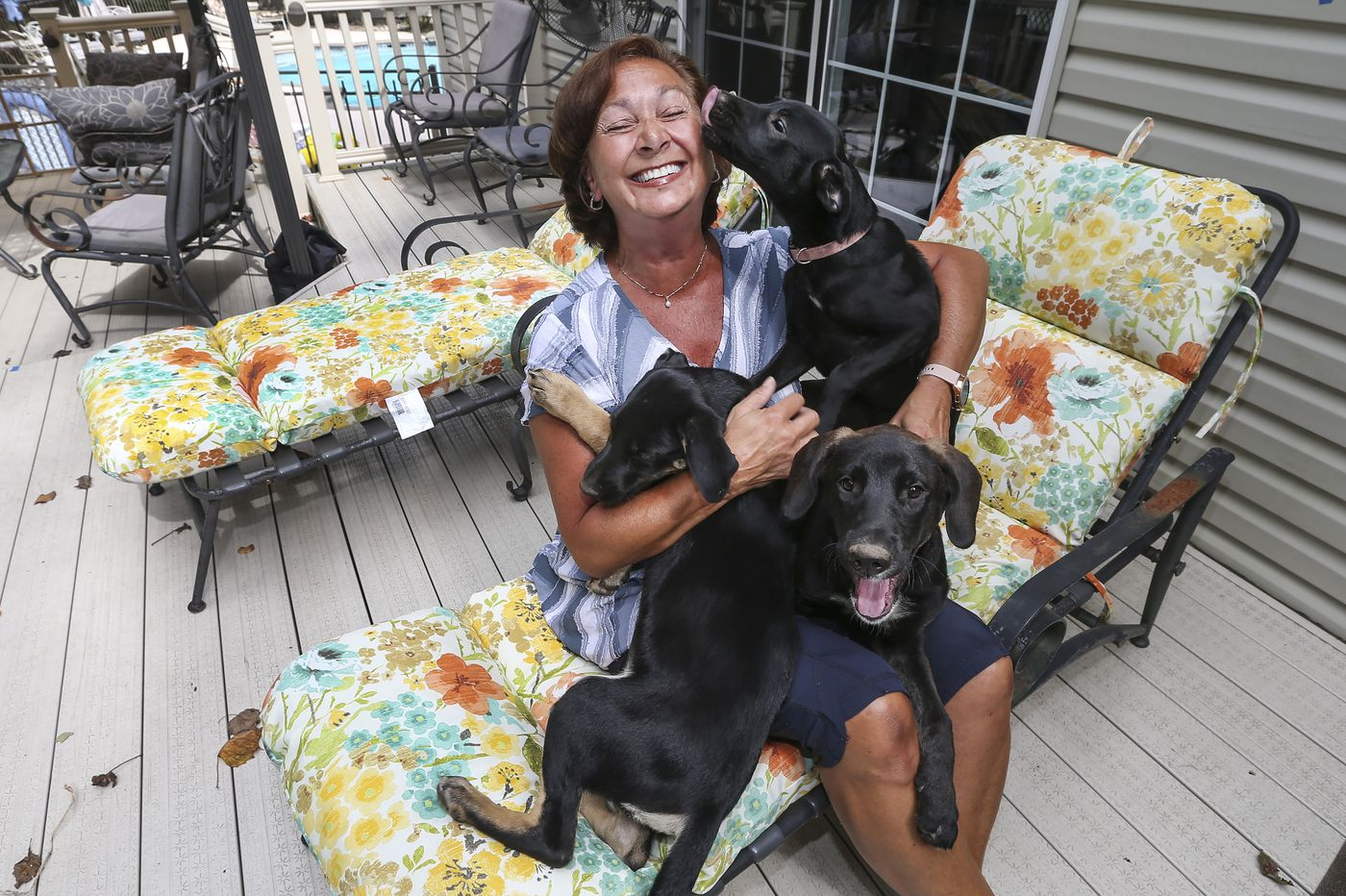 Meet the South Jersey volunteer who fosters injured, pregnant, and newborn pets