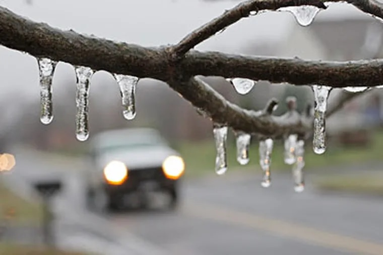 Along Folly Road in Warrington, there was no snow - but there was a coating of ice that made the trees and bushes along the road sparkle with light. It also made the roads slippery and tricky to drive.