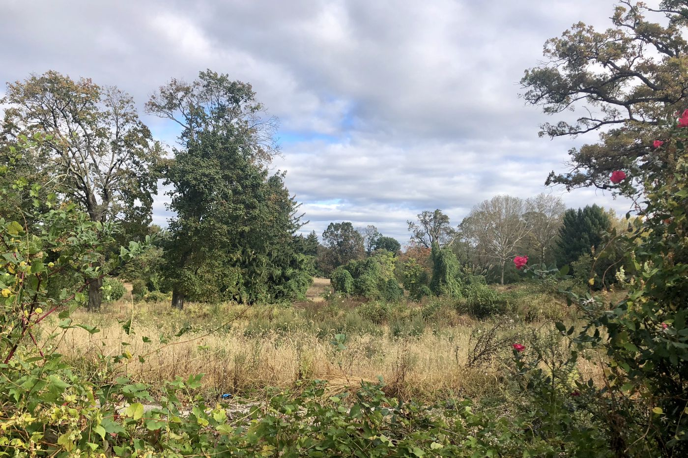 Developer sells former Cheltenham country club land to Bucks County builder for $9 million