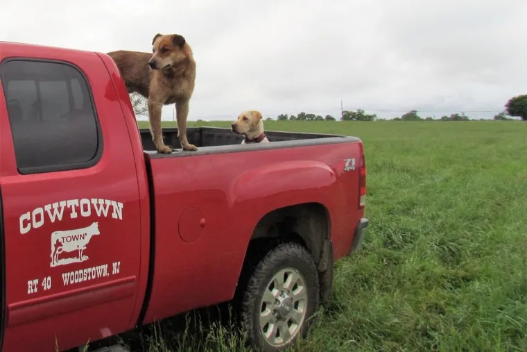Preserving the grasslands near Cowtown Rodeo took a number of years and agencies.