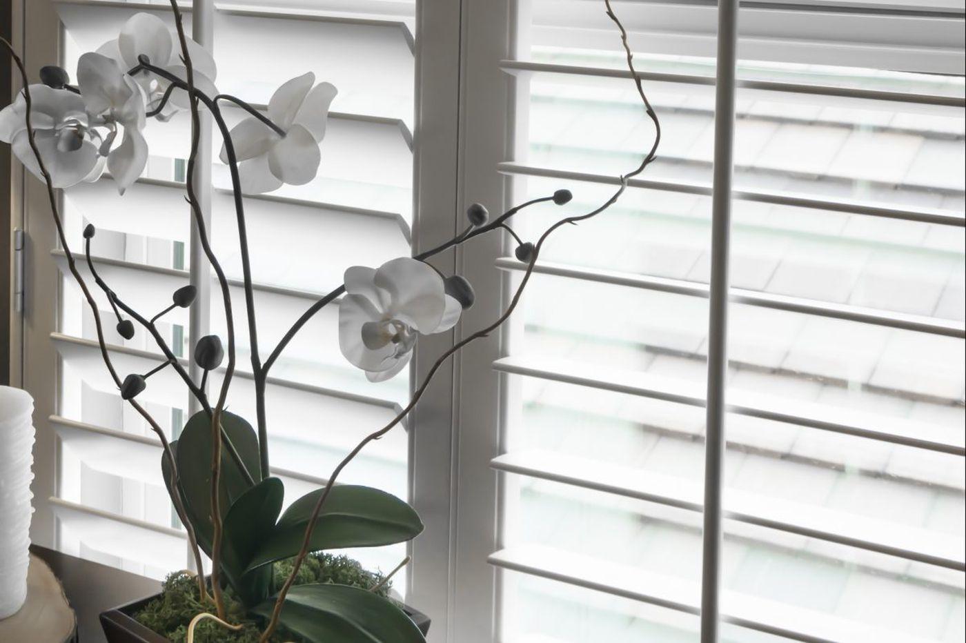 Ask Jennifer Adams: Window blinds or shades? Balancing privacy, sun shades and views