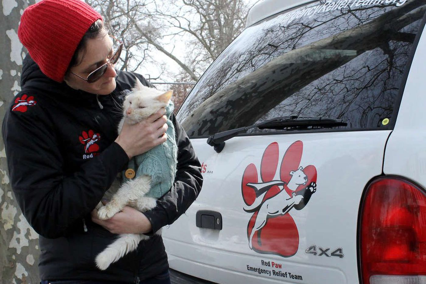 Philly group that helps animals after fires wins $100K grant