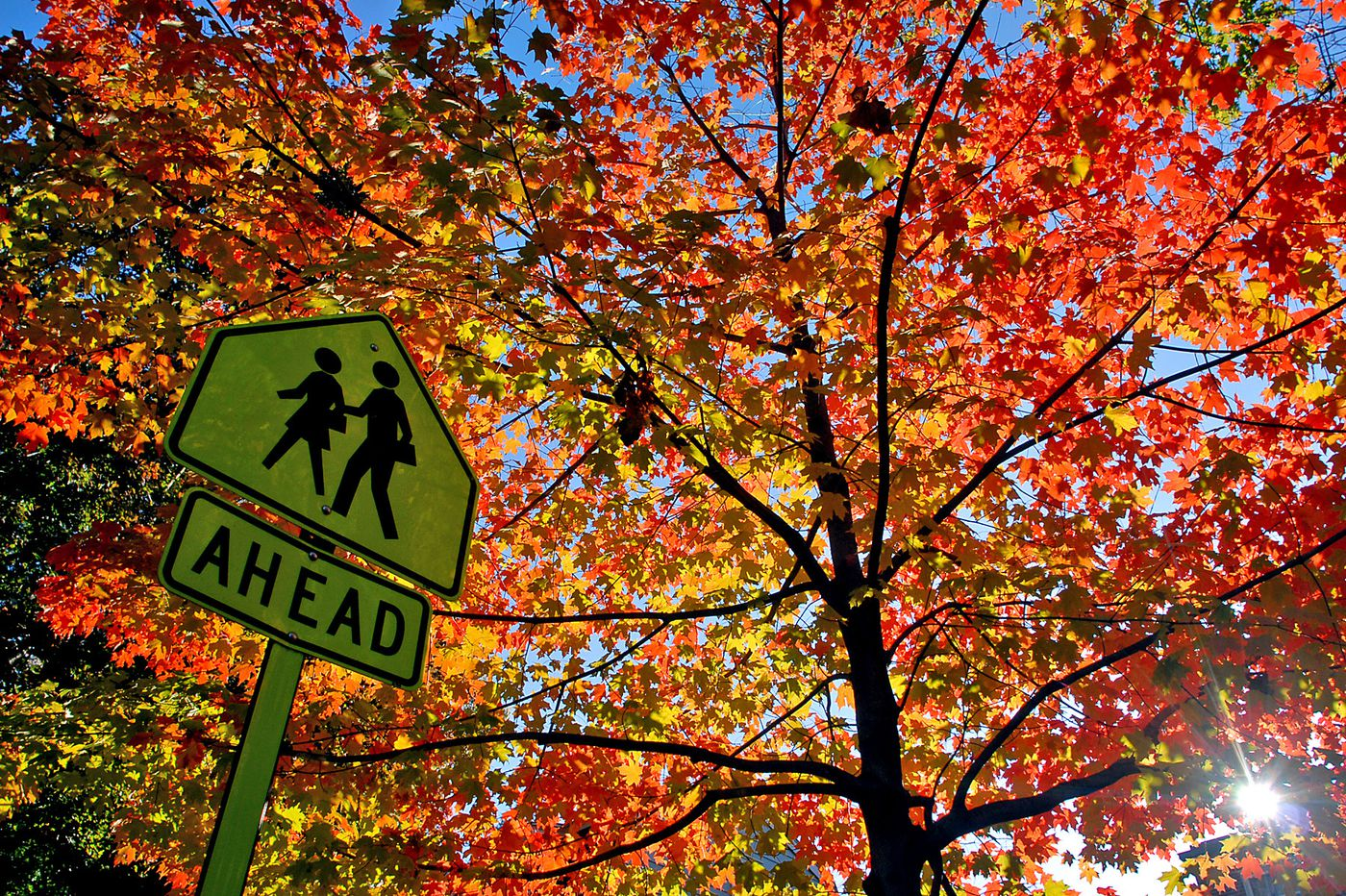 With autumn upon us, darker days and moods may be ahead. Here's what to do about it.