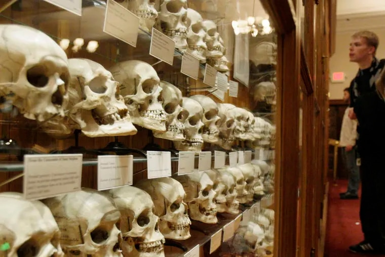The Mutter Museum is home to the Hyrtl Skull Collection, which displays 139 human skulls.