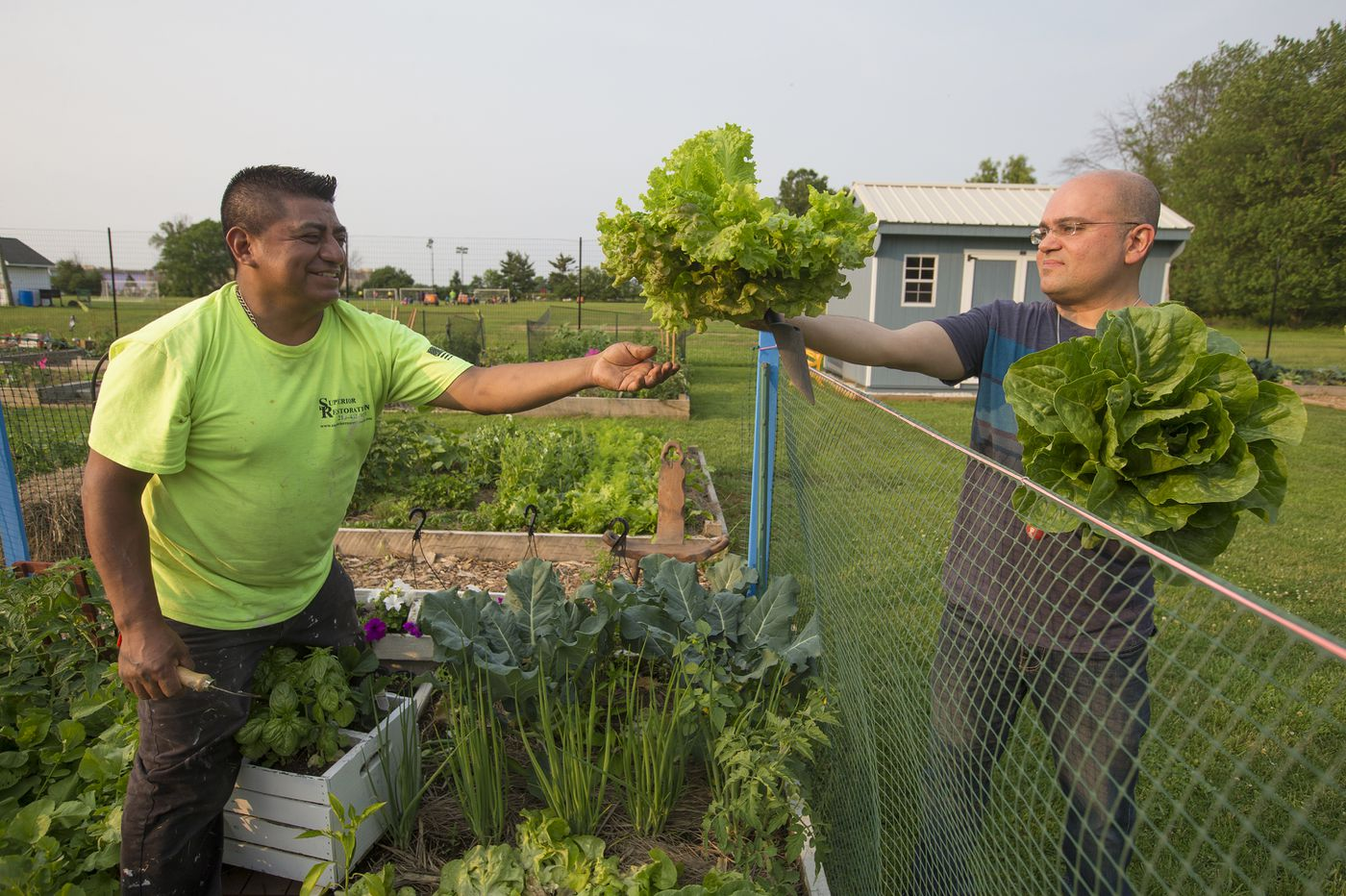 New immigrant-run community garden plants hope for families in Bucks County