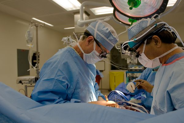 For a heart surgeon in training, teaching offers another kind of education