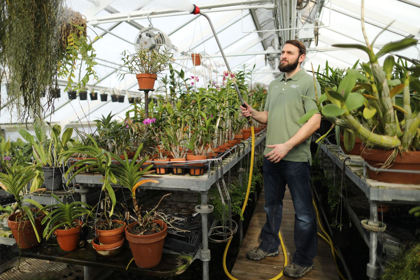 Longwood Gardens Orchid Grower Is Cultivating His Dream Of Becoming A Pastor We The People