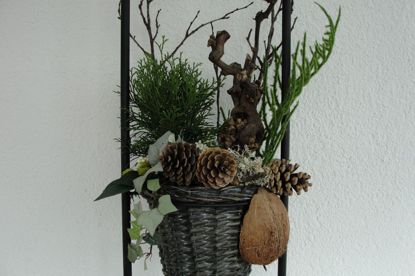 Ask Jennifer Adams: Decorate your indoor plants for an alternative, modern Christmas tree