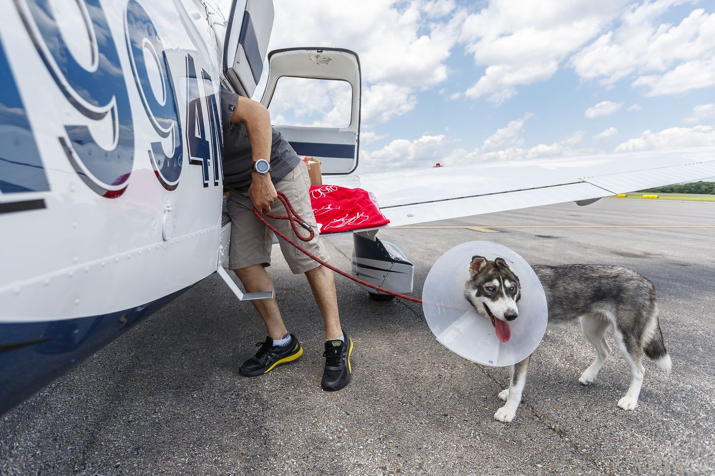 These Philly pilots fly dogs across the East Coast to save