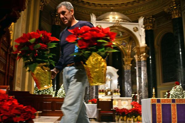 It takes a heavenly host to ready the cathedral for Christmas