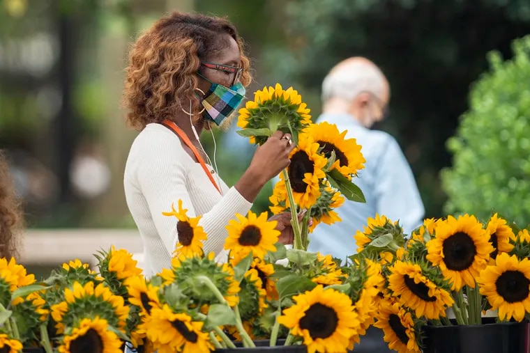A unidentified woman shops from sunflowers while wearing a face mask in Center City,  Philadelphia, Pa. Tuesday, August 3, 2021.