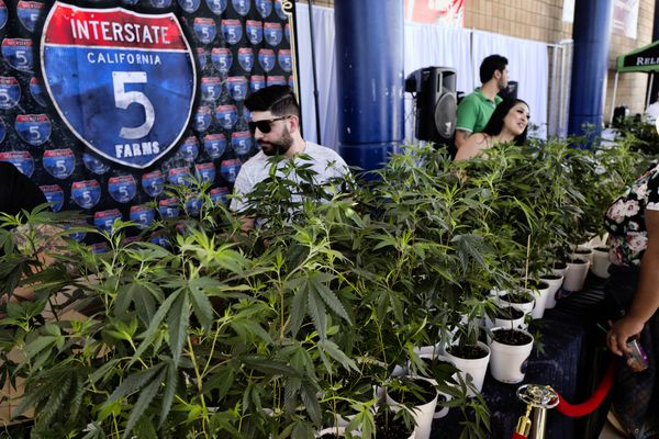 Marijuana tax windfall fails to materialize in California — Pot Tax 101 for Pennsylvania?