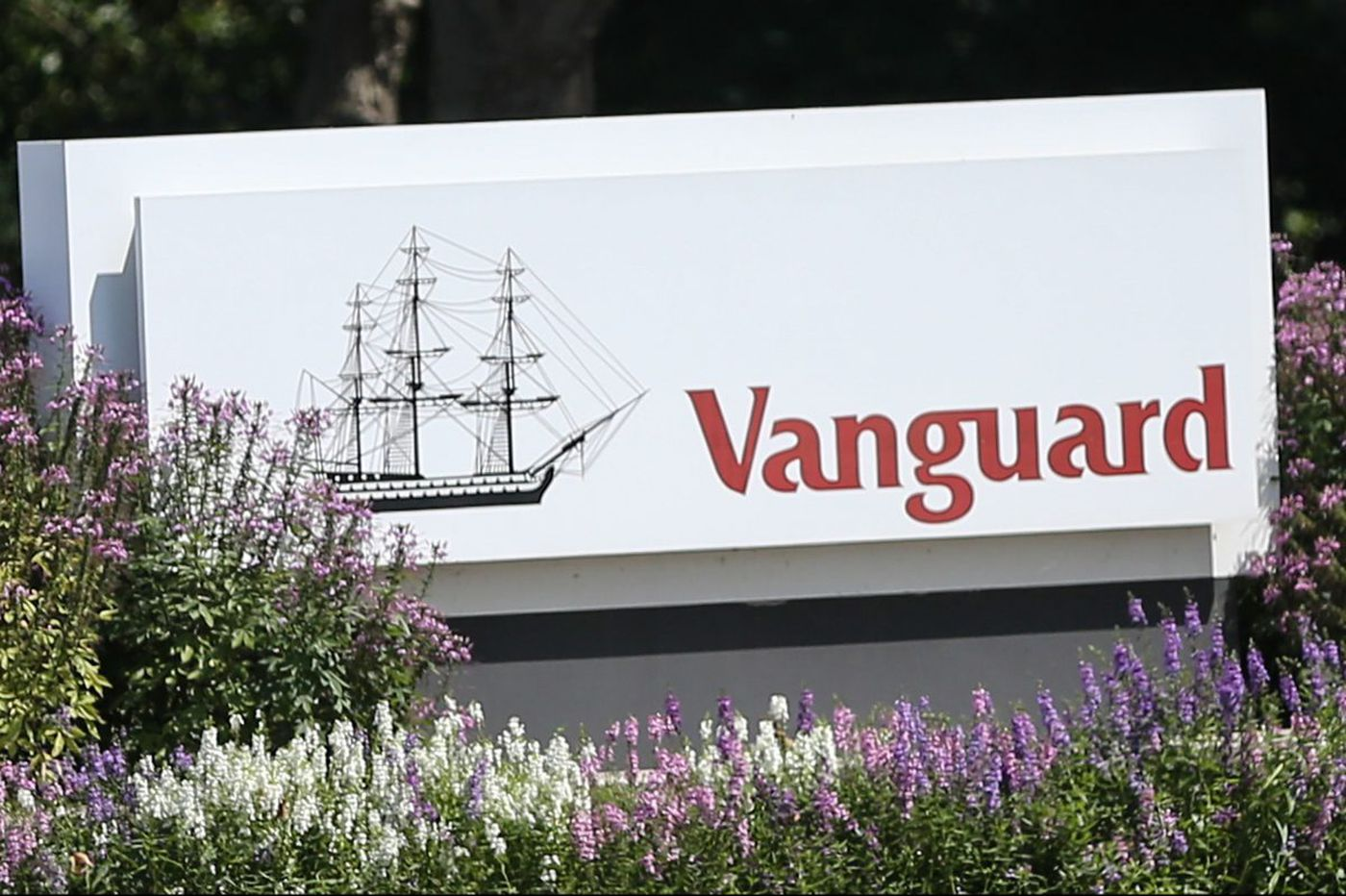 Vanguard, approaching $5 trillion, corrects account reports