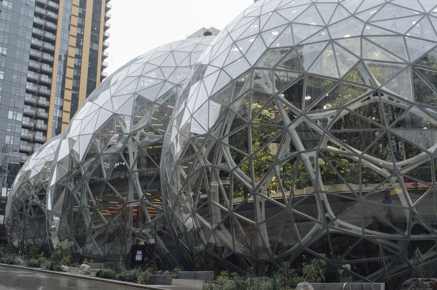 It's our money, so how much are we giving to Amazon? | Editorial