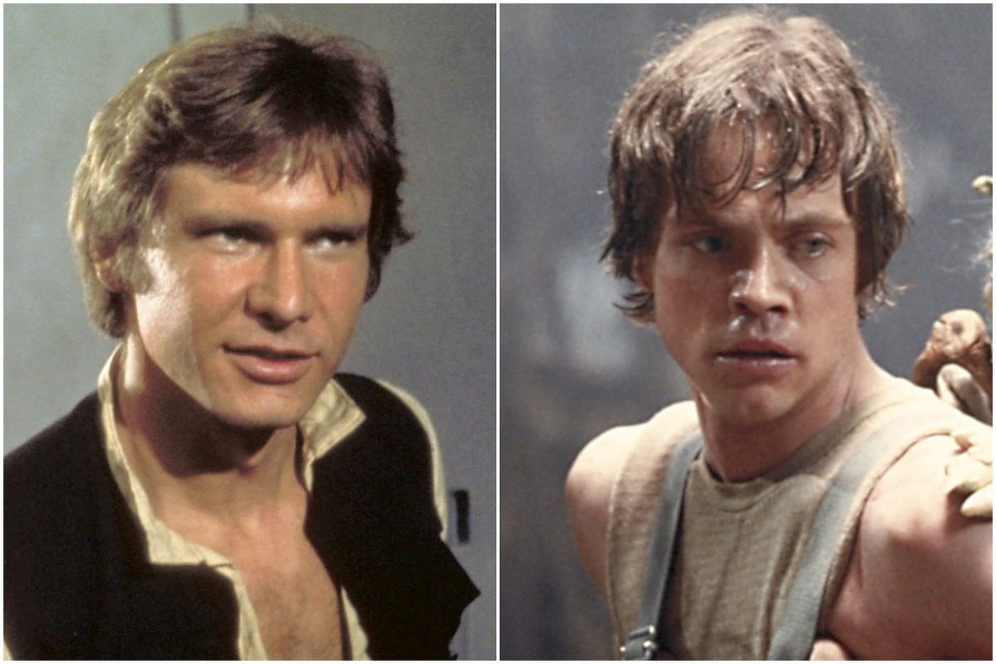 han solo or luke skywalker? this 'star wars' fan made his choice a
