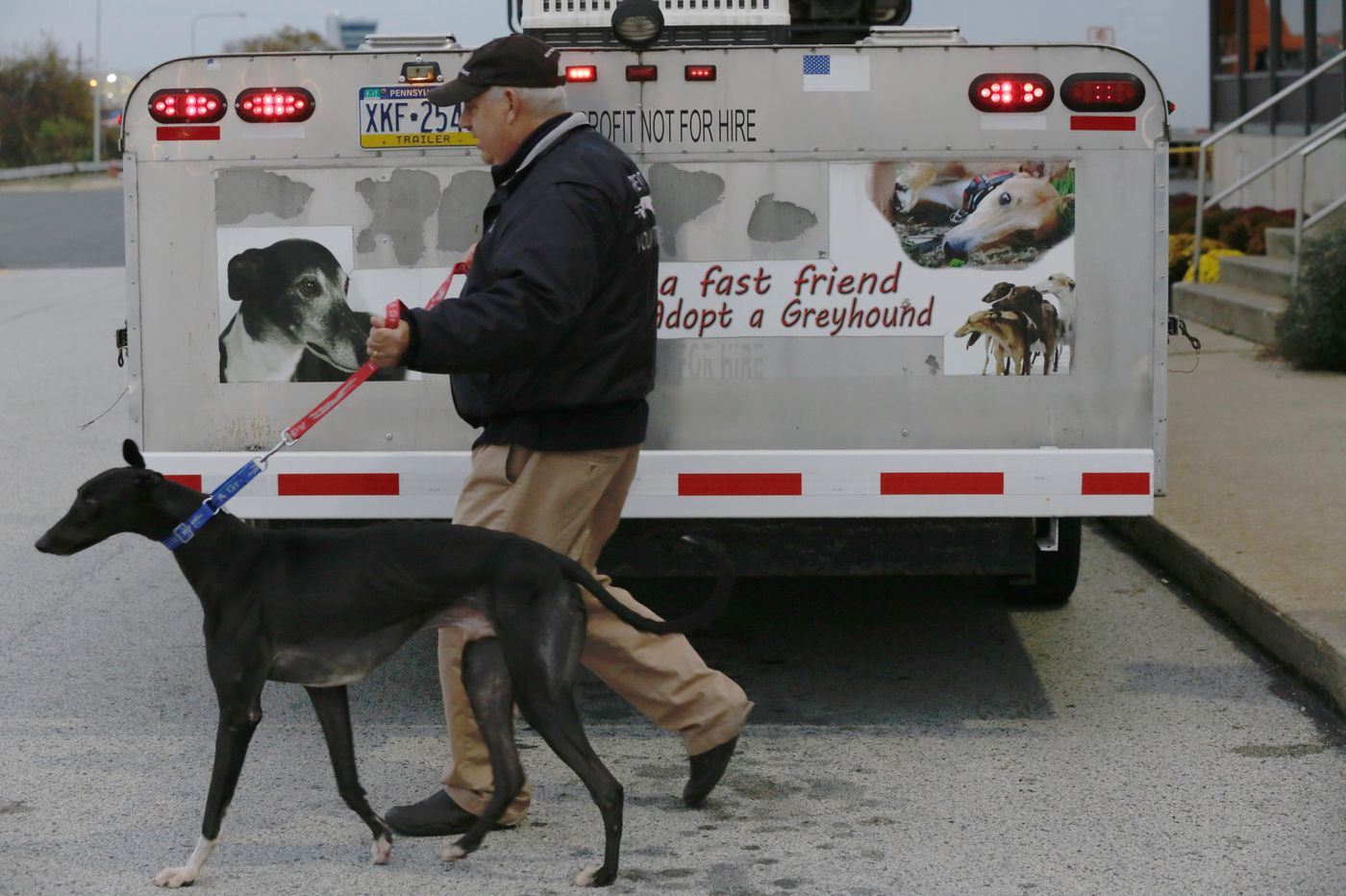 Greyhounds arrive in Philly from the 'worst racetrack in the world'