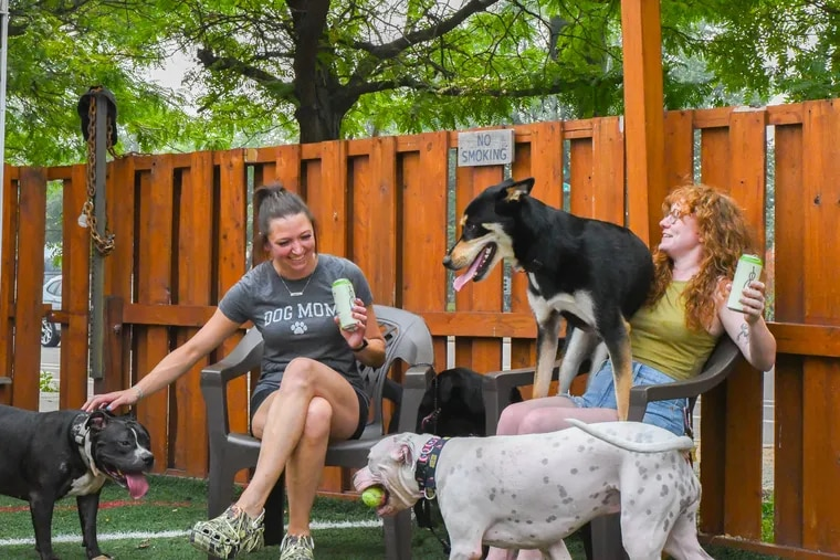 Unleashed is a hybrid dog park and beer garden next to Craft Hall, 901 N. Delaware Ave.