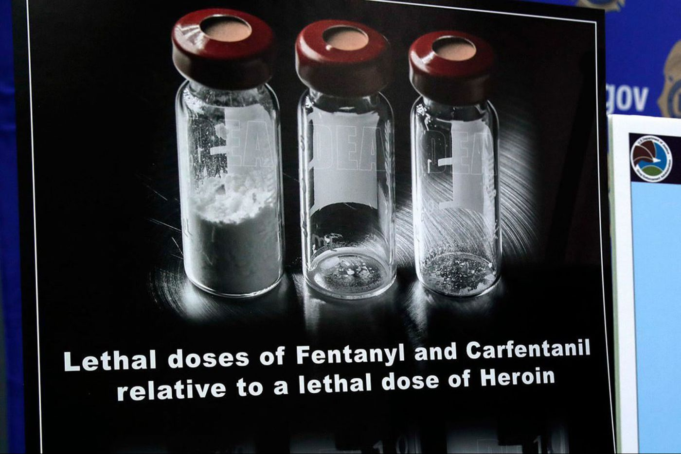 Two men die of carfentanil overdoses in Montco