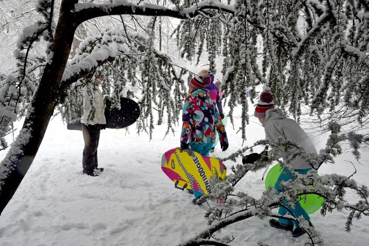 Children walk amid snow-laden trees to sled on a hill in Haddonfield on Wednesday.