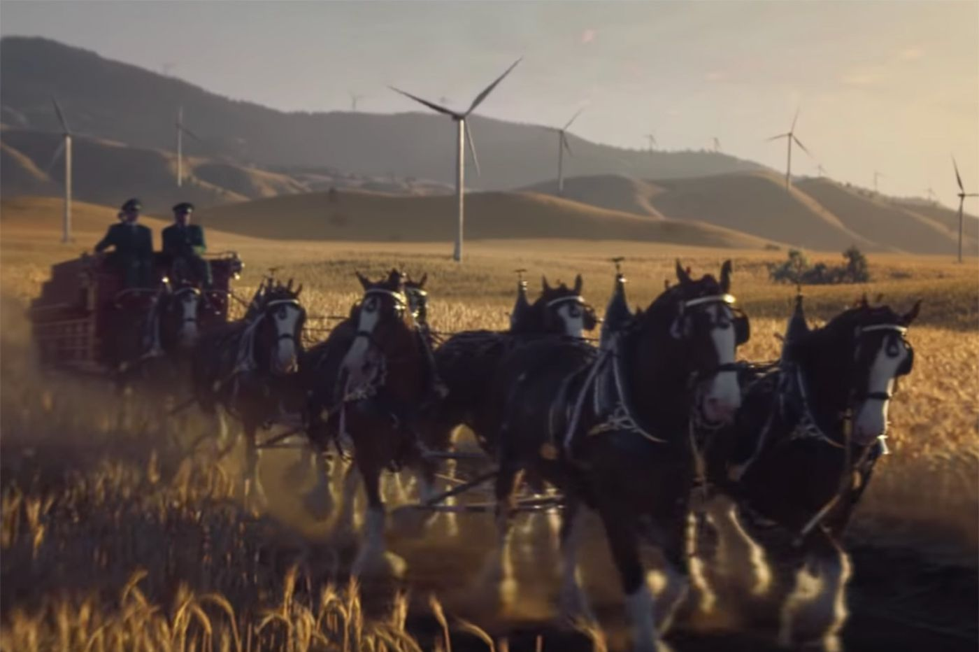 Budweiser's Super Bowl commercial featuring Clydesdales and wind power draws big numbers online