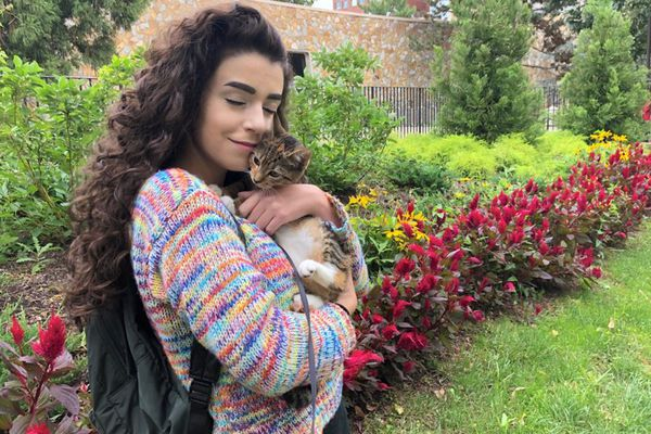 More college students are turning to emotional support animals, even amid the punchlines