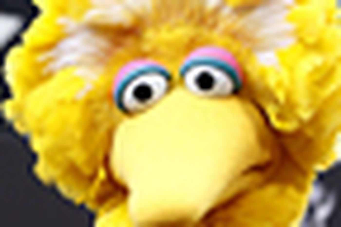 Big Bird, where you'd least expect him