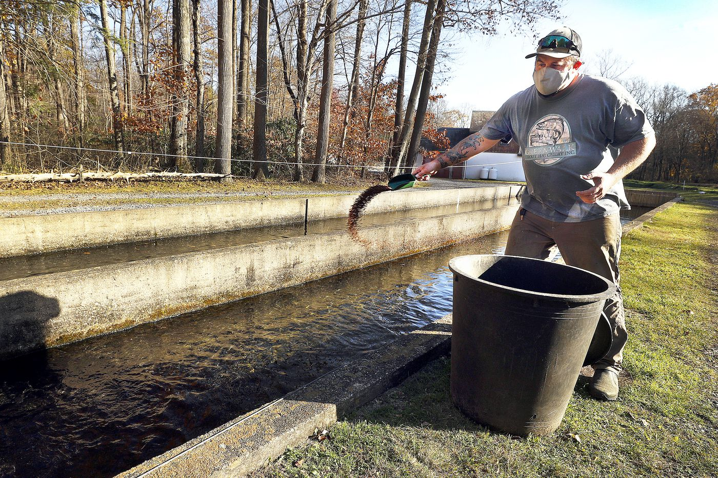 Lehigh Valley trout farm finds new success supplying top restaurants