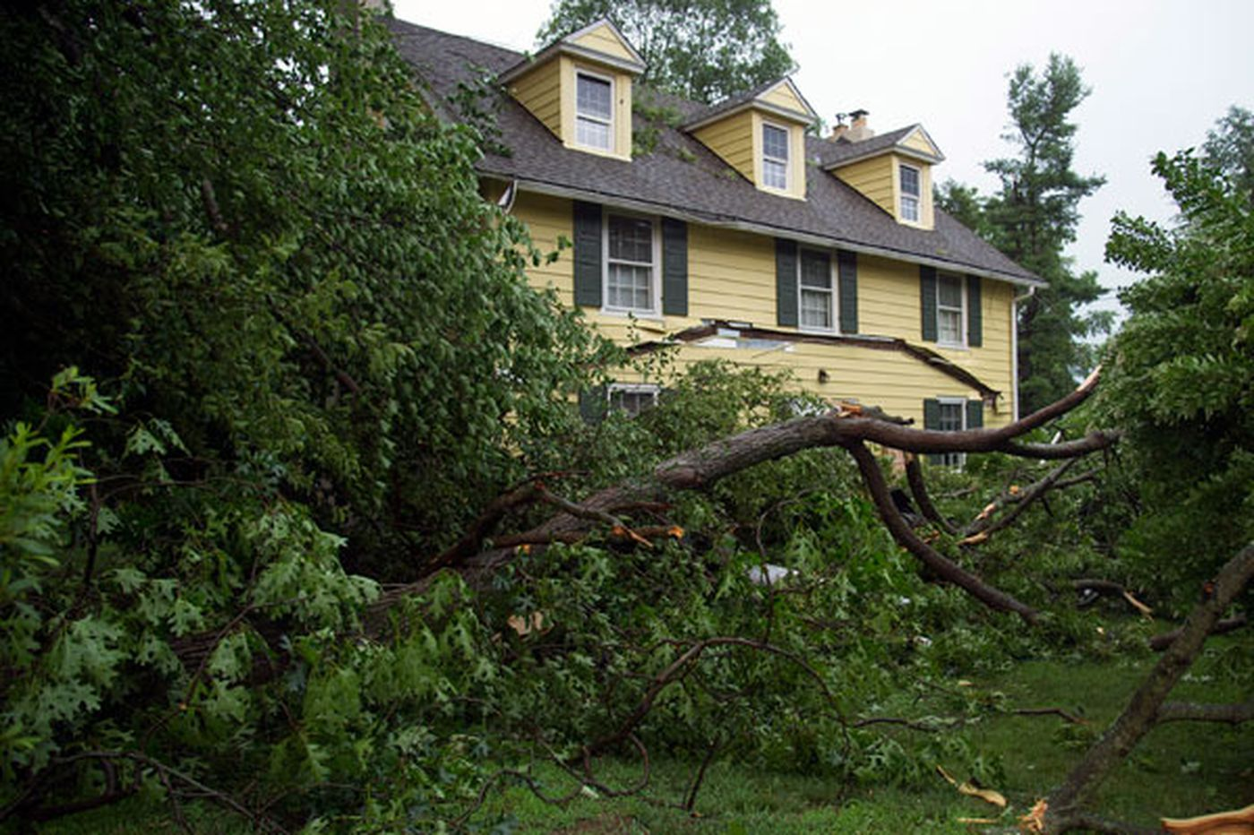Tornado touched down in New Jersey: National Weather Service