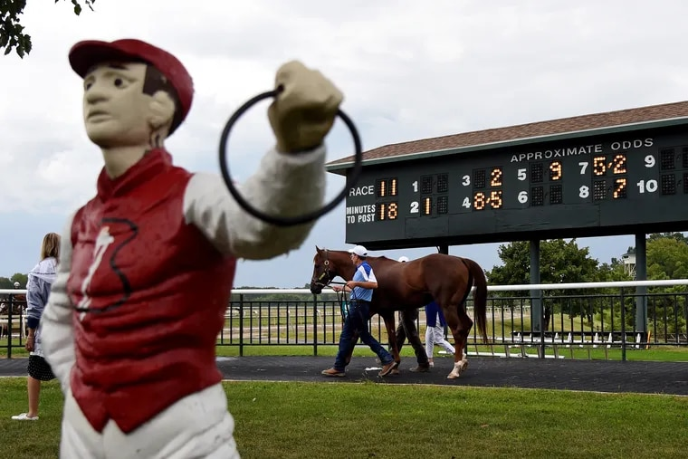 Smarty Jones, the 2004 Kentucky Derby and Preakness champion, leaves the walking ring as he makes his first appearance at the Parx Racetrack in 15 years on Sept. 2, 2019.