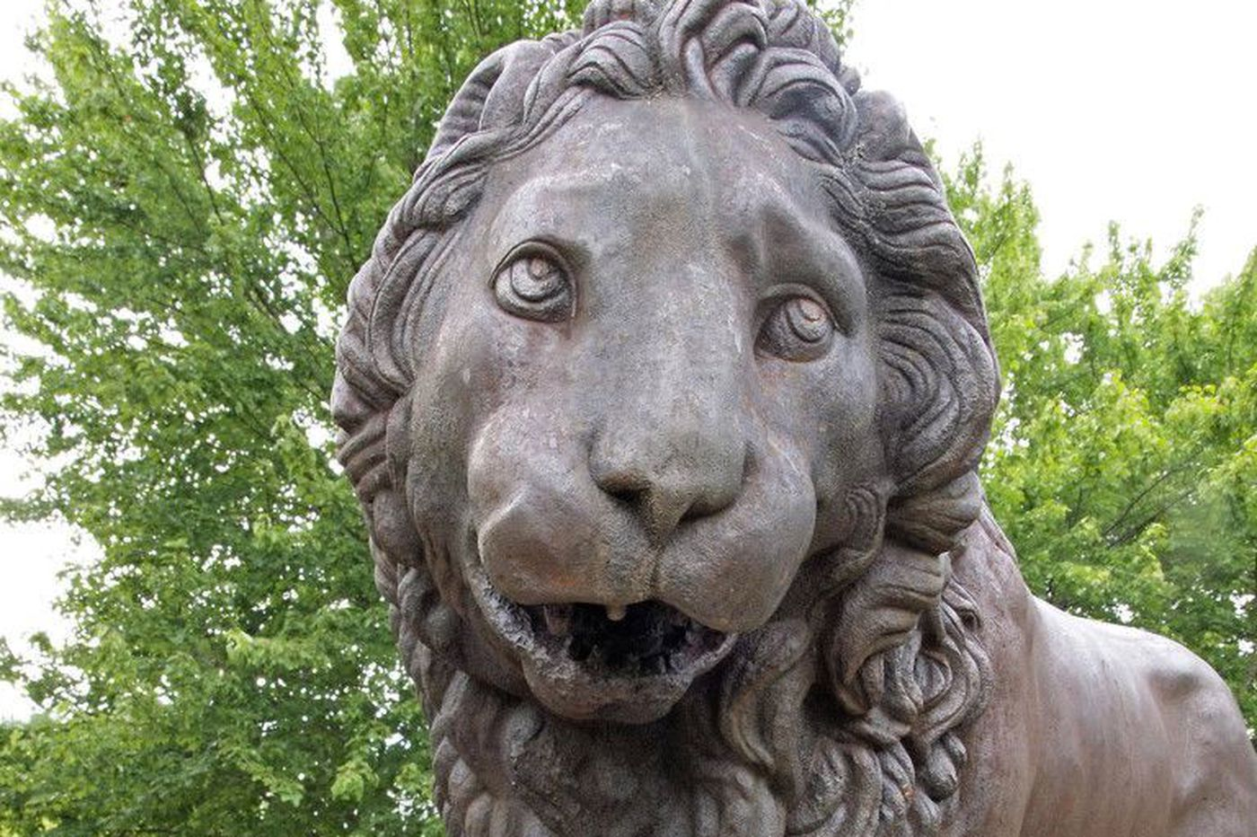 The Florentine Lions will soon roar back into the spotlight at the Mann Center