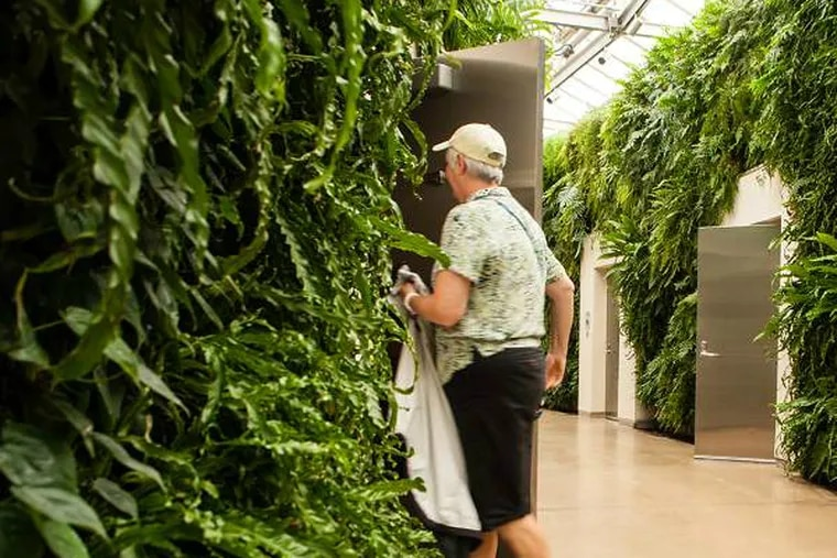 The lush fern walls are an eager visitor's first impressions of a snazzy restroom experience at Longwood Gardens' bathrooms, which have been voted the best in the country. (Matthew Hall / Staff Photographer)