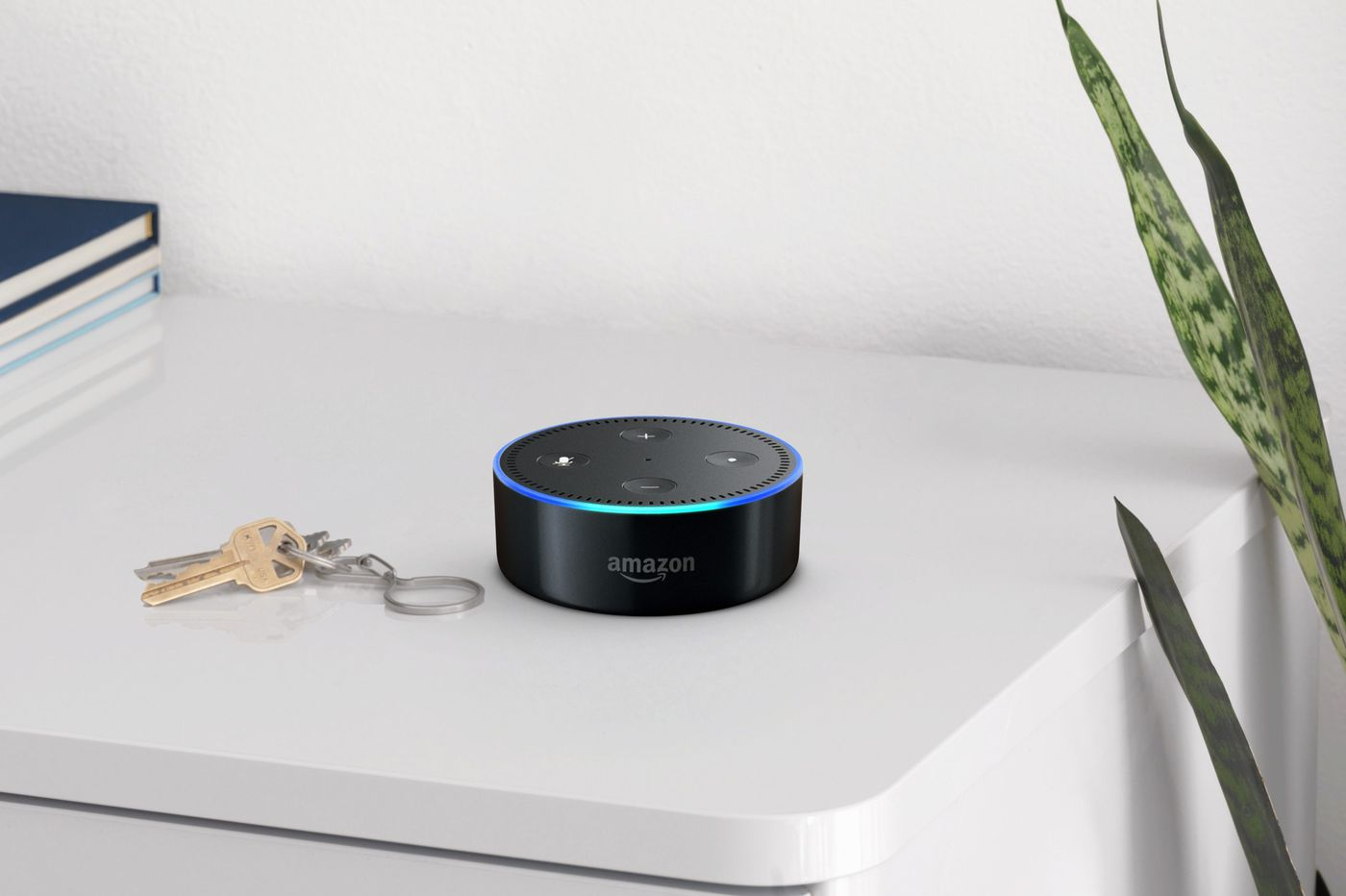 In smart homes, accepting privacy risks