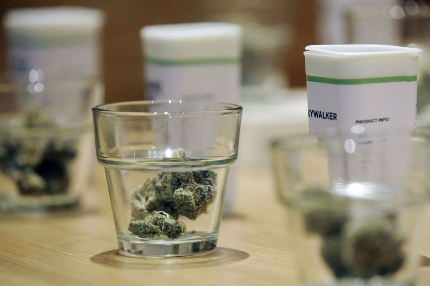 Suit alleges pay-to-play in Pa.'s marijuana research program
