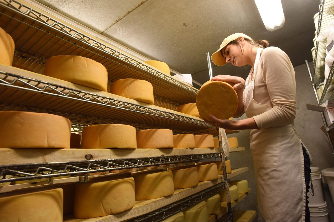 In a languishing dairy industry, farmers look to artisanal cheese as a solution