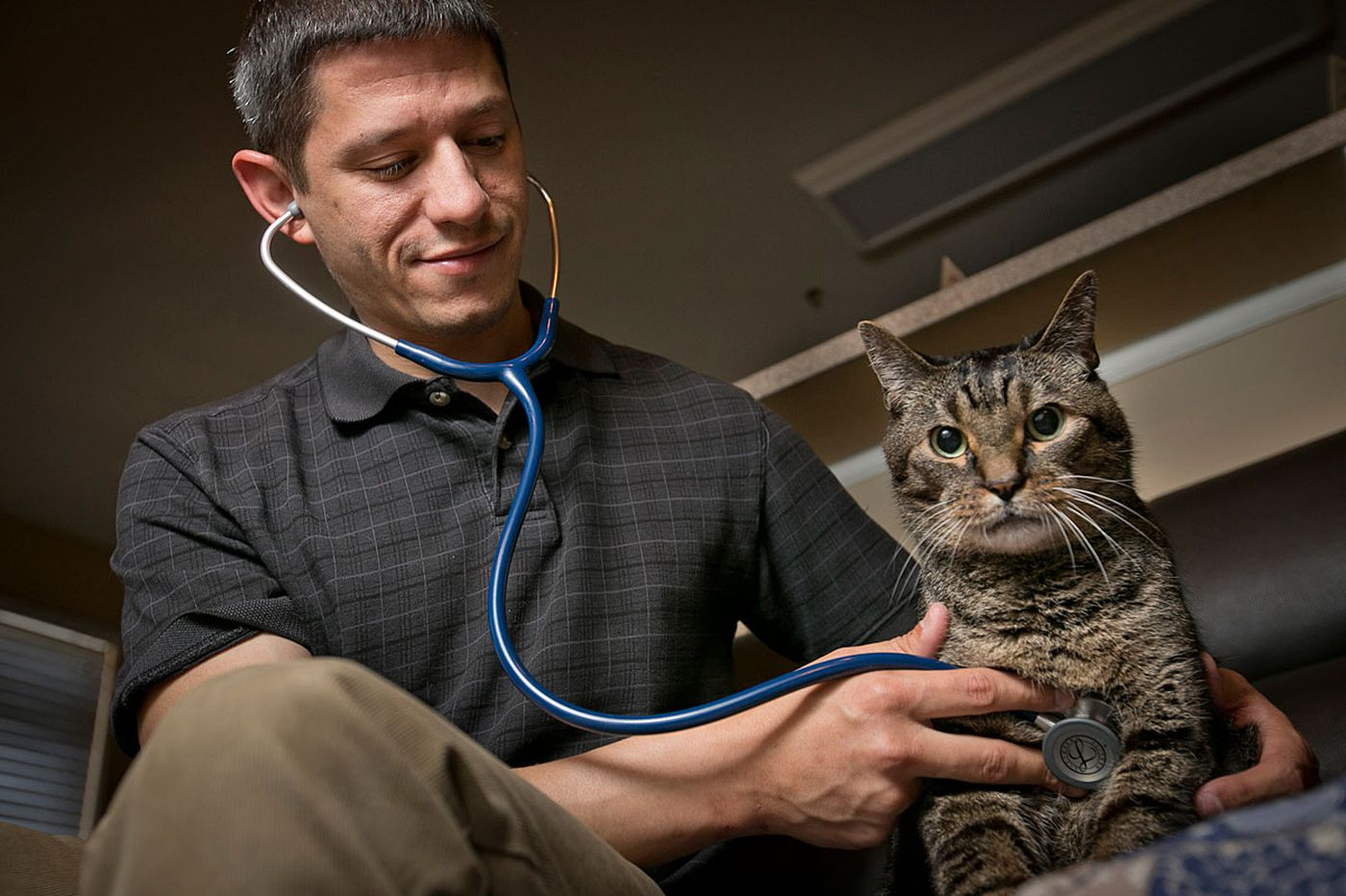 Lap of Love franchisees offer palliative veterinary care
