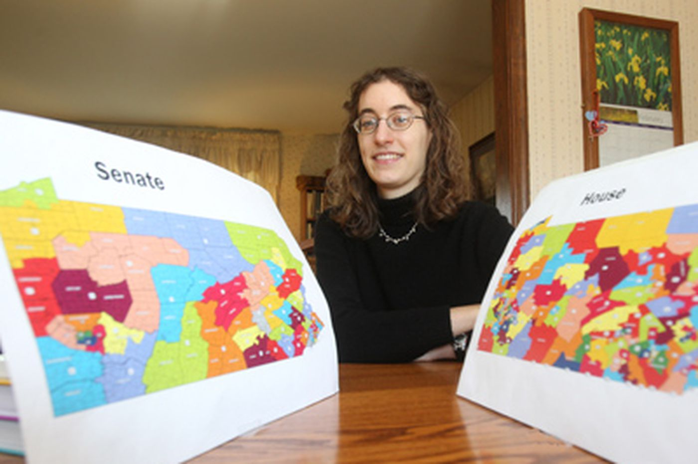 Allentown woman shows Harrisburg how to make a legislative map