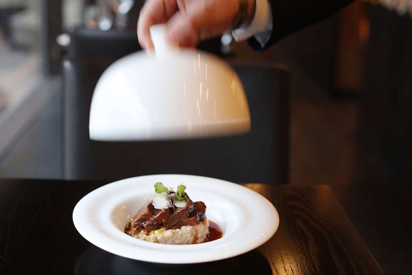 Glossy Scarpetta is eager to please but serves fine ingredients with little finesse