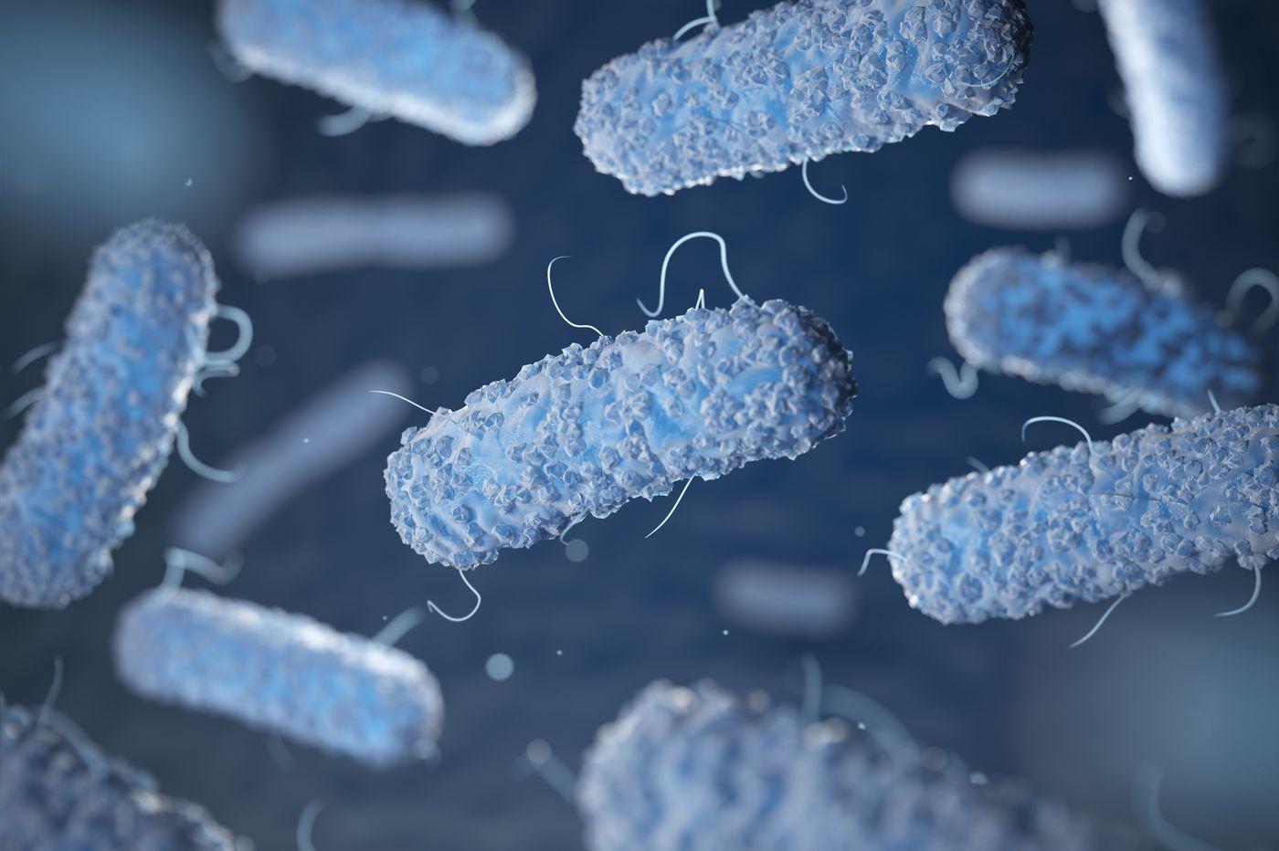 Philadelphia officials issue health alert over E. coli outbreak