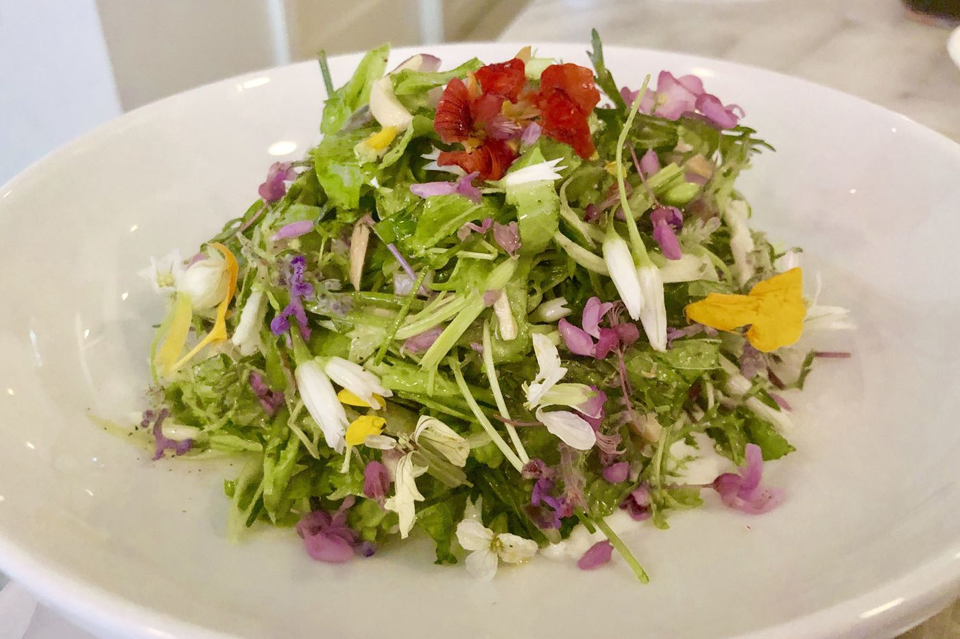 Here's where to get the most beautiful salad in Philadelphia