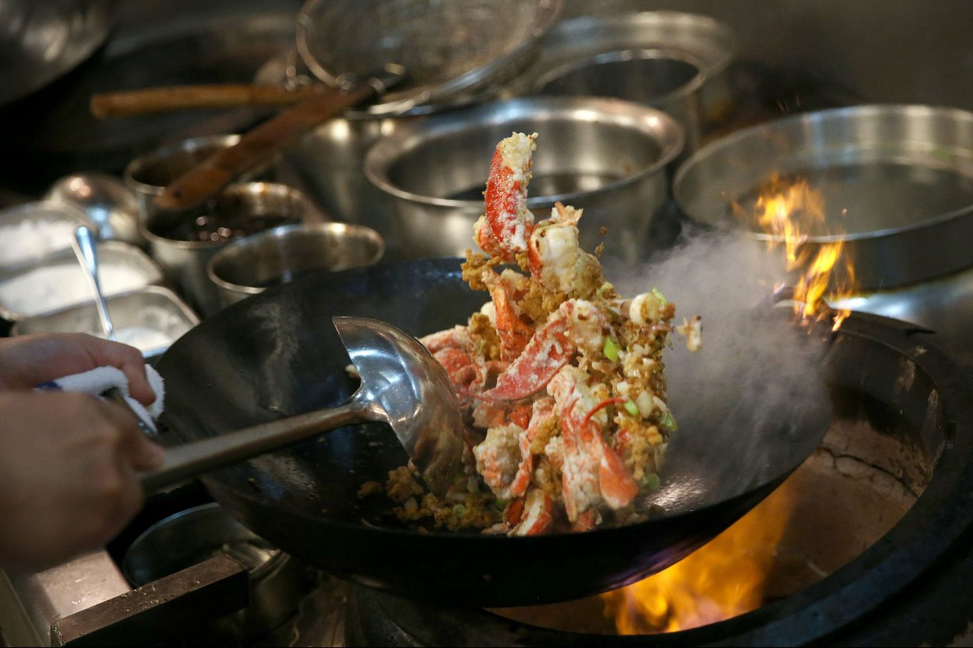China Gourmet is Northeast Philly's new culinary star