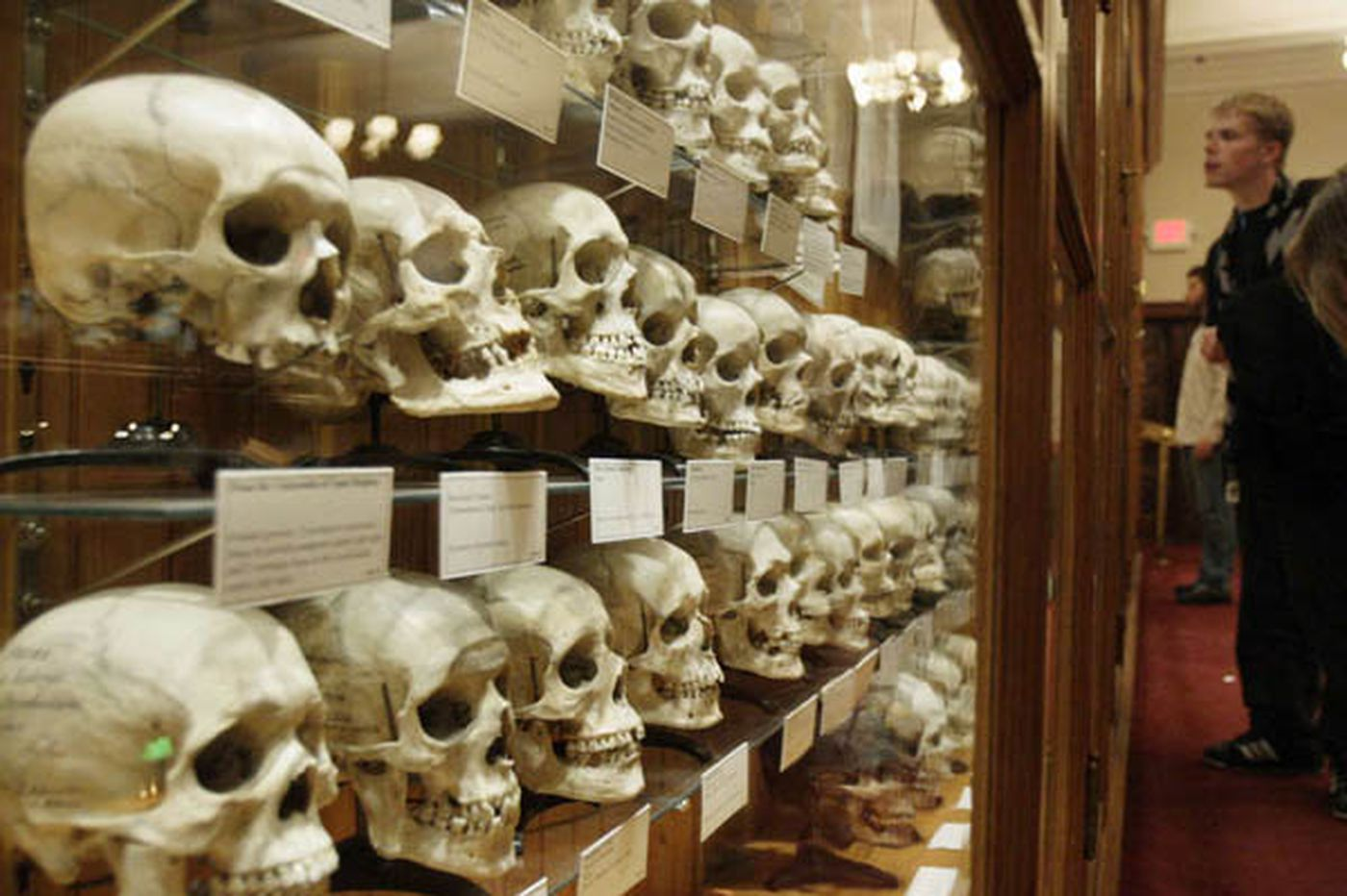 Mutter Museum: More than just a freak show