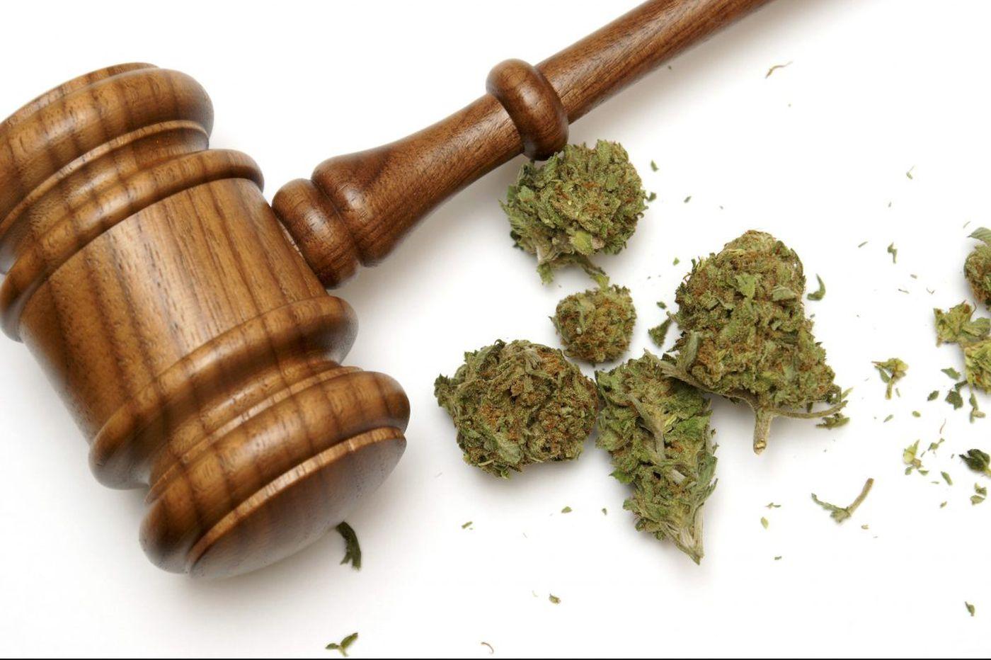 Sparking a marijuana war: rival wants Pa. to drop grower under criminal investigation