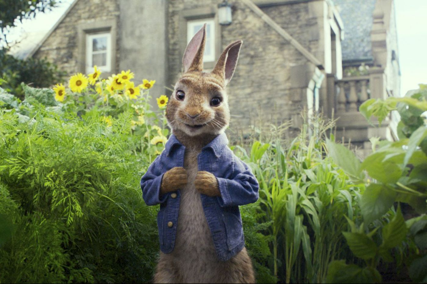 Food allergies are no joke, say parents angry over new 'Peter Rabbit' movie