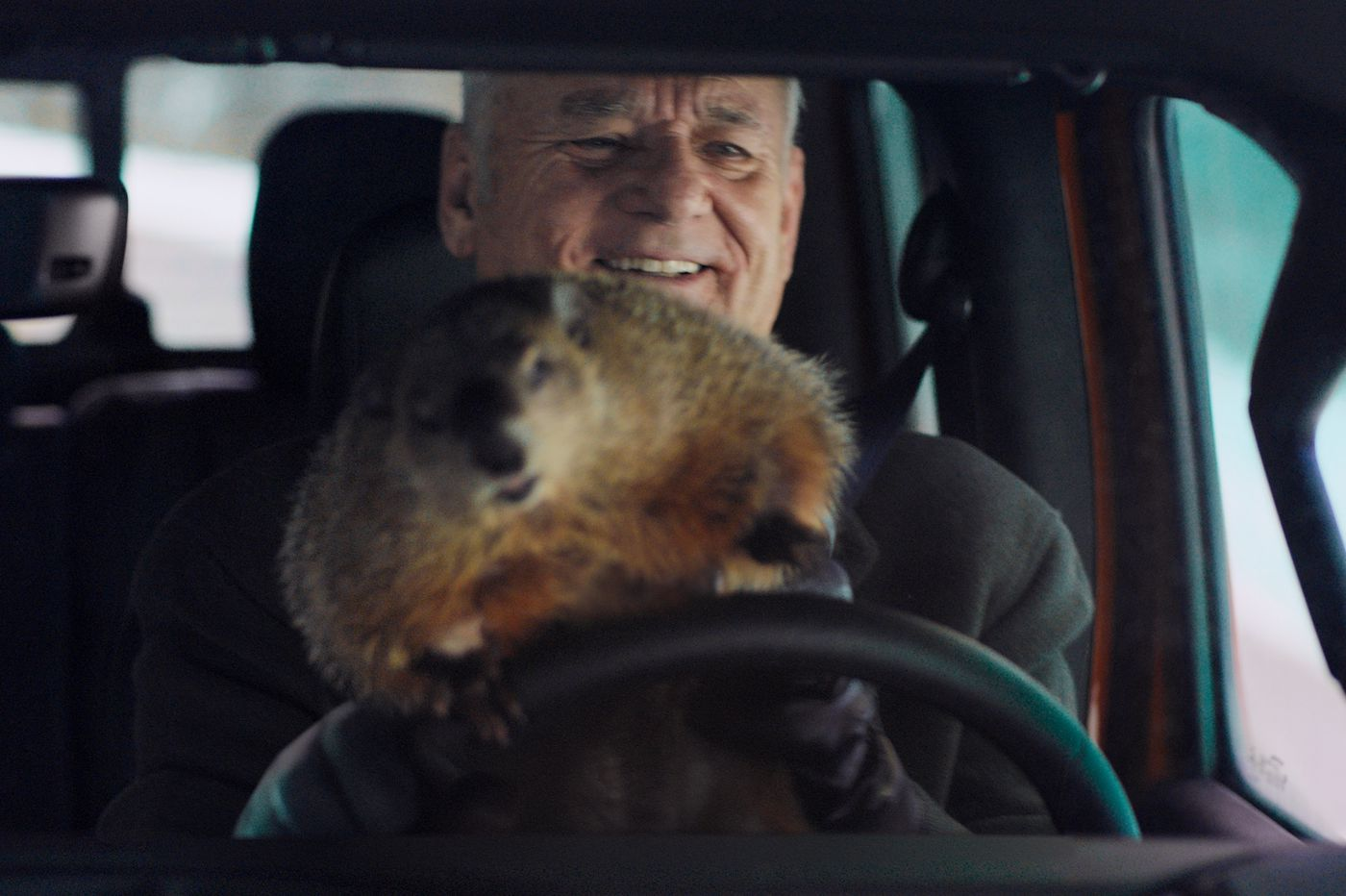 The strange story of a Bill Murray Super Bowl ad and a Pennsylvania groundhog that has her own merch