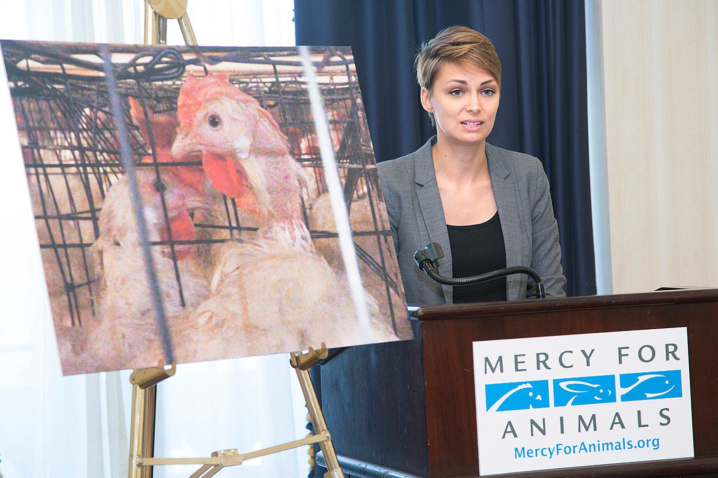 Activists allege cruelty by Eggland's Best supplier, company fights back
